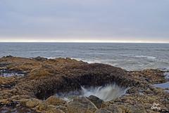 DSC_2606 ~ Thor's Well OR (stephanie.ovdiyenko) Tags: thorswell oregoncoast pacificcoast pacificocean rocks waves ocean