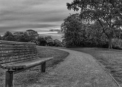 Time to relax!😀 (LeanneHall3 :-)) Tags: blackandwhite mono bench trees branches grass leaves field pathway treetrunks sky skyscape clouds cloudsstormssunsetssunrises eastpark hull landscape kingstonuponhull canon 1300d groupenuagesetciel