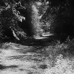 A93 Old Road thumbnail