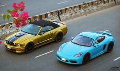 Ford Mustang GT CS and Porsche 718 Cayman, Bangladesh. (Samee55) Tags: bangladesh dhaka dhakagram carspotting carsofbangladesh carcandid carsspotted2018 rarecars carsaroundtheworld ontheroad automotivespotting automotivephoto automotivephotography canonphotography germancars americancars coupe ford mustang gtcs 718 cayman