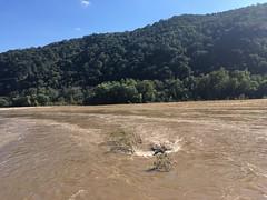 Potomac/Shenandoah Rapids (batterymillx) Tags: harpersferry harpers ferry wv west virginia westvirginia outdoor park nationalpark national river potomacriver potomac shenandoah shenandoahriver