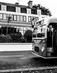 806 @ The Woodvale, Gurnard (martynwhittaker1987) Tags: isleofwight beerandbuses 2018 classicbusesbeerandwalksweekend tourism buses busrally vehiclerunningday newportquay isleofwightbusandcoachmuseum rydedepot drinking realale camra campaignforrealale 13th14thoctober2018 vintagebuses bus wightlink redfunnel southwesternrailway islandline isleofwightsteamrailway southernvectis goaheadsouthcoast visitisleofwight rydetowncouncil islandbrewery goddardsbrewery fdl927d bristolmw6g ecw b45f southernvectisomnibuscompany july1966 806 b43f 1967 heritagefleet gurnard thewoodvale westcowes seafront esplanade