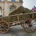 Wagon with hay on square in Ljubljana, Slovenia