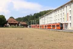 2018-08-07, RBS, Deisswil (Fototak) Tags: schmalspurbahn railway treno switzerland train sbahn bern rbs stadler next worbla 21 01