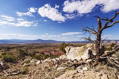 Thataway (daveanderson14) Tags: ghostranch chimneyrocktrail newmexico landscape cerroperdernalmesa