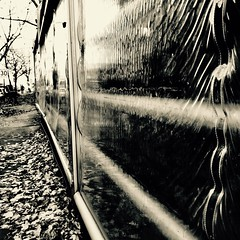 Un Stalker dans la ville... Tarkovski n'est pas loin... (woltarise) Tags: stalker movie film andreïtarkosky russe cinéaste passant ville mystère ambiance montréal iphone7 sépia streetwise