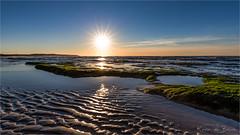 Endless possibilities! (karindebruin) Tags: france frankrijk opaalkustcoteopale beach sand sea strand zand zee golden hour nd06hardgrad structures structuren mos moss