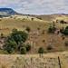 Dry season in Australia. Lookout at Mount Gipps road. Australia