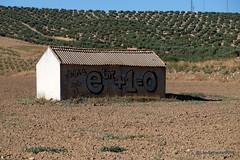 Matemáticas y Agricultura  en los campos de Andalucía (xD) (Landahlauts) Tags: agricultura andalucia andalusianvillage astronomer campo camposdeandalucia comarcadelosmontes eulersequation eulersformula eulersnumber formula fujifilmfujinonxf18135mmf3556rlmoiswr fujifilmxt1 identidaddeeuler imaginaryunit laecuacionmasbelladelmundo leonhardeuler logarithms logaritmo logician matematicas mathematicalbeauty mathematician montesorientales numerodeeuler numeroirracional numeropi paisajerural physicist piñar pinar puebloandaluz ratio secano trascendente unidadimaginaria graffiti grafiti pintada nerdsworld nerd geek mostbeautifultheoreminmathematics eulersidentity explore inexplore olivo olivar olive tree arado arar cultivo aove aceitedeolivavirgenandaluz