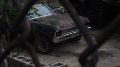 (Subaruined95) Tags: abandoned neglected old chevrolet chevy nova