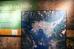 Victoria, Vancouver island (Carneddau) Tags: britishcolumbia canada fraserriver royalbcmuseum vancouverisland victoria naturalworld riverdelta ca