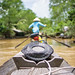 Mekong Delta Boat Adventure in Vietnam