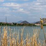 Lago thumbnail