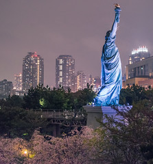 Odaiba - Tokyo, Japan (inefekt69) Tags: odaiba tokyo japan sakura cherryblossoms flowers nature spring hanami nikon d5500 日本 さくら 桜 花見 rainbow bridge お台場 レインボーブリッジ
