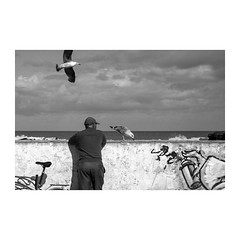 Essaouira (>> Anne) Tags: tataouane maroc voyagephotographique noiretblanc blackwhite noirblanc essaouira