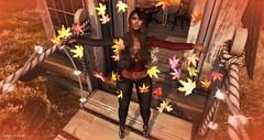 Fall Is In The Air (Indigo Avonside of My Sister's Closet) Tags: indigo lelutka maitreya revoul iconic prism glamistry zurijewelry gorgeousdolls belleposes scala