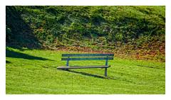On the Downslope (Timothy Valentine) Tags: 2018 large hillside 1018 monday providence rhodeisland unitedstates us bench 169