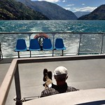 Reading a Book on the Back of a Ferry Boat thumbnail