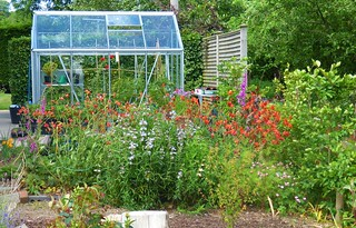The garden: June ... new greenhouse and flower collection