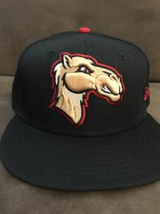 2018 Great Lakes Loons Alternate Camels Hat (black74diamond) Tags: greatlakes camels loons hat alternate 2018