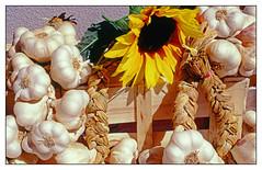 Sur le marché -  On the market (diaph76) Tags: extérieur france provence var fleur flowers ail garlic aulx cageot