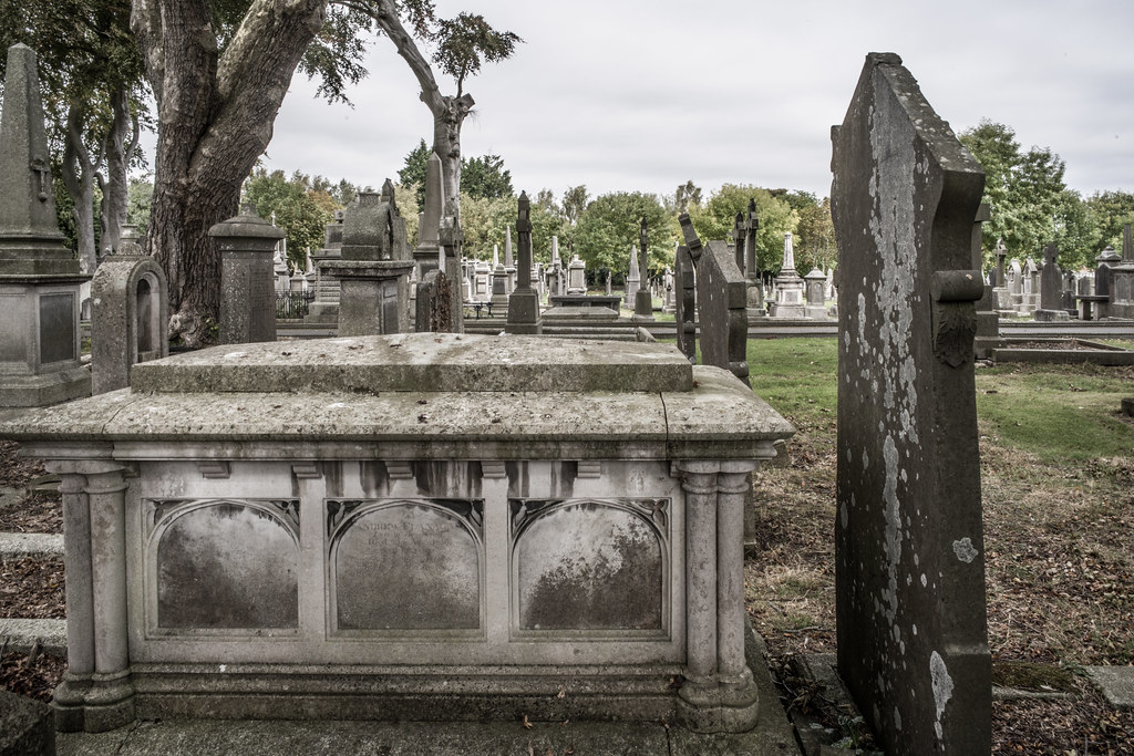 SEPTEMBER 2018 VISIT TO GLASNEVIN CEMETERY [ I USED A BATIS 25mm LENS AND I EXPERIMENTED WITH CAPTURE ONE]-144822
