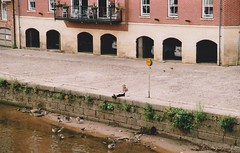 york35mm3 (Emma Conner) Tags: york streetphotography 35mm filmphotography film people x candids river ouse city northyorkshire