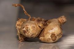 Ginger root (Marine Explorer) Tags: nature suburbia sydney australia marineexplorer