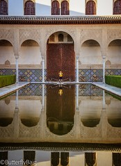 The Court of the Myrtles & my 💕    #CourtOfTheMyrtles #Reflection #MirrorOfTheSky #Alhambra #Fortress #Palace #Architecture #IslamicGeometry #IslamicArchitecture #Arches #AlAndalus ‎#Andalucia ‎#Spain ‎#TheGoldenTriangle ‎#Granada ‎#TheGoldenAg (Sarwat Baig) Tags: life reflection toneseekers love fortress nasridpalace arches alhambra andalucia islamicgeometry thegoldentriangle butterflybaigphotography granada mirrorofthesky gameoftones spain architecture traveldiaries liveforthestory palace nasriddynasty mycanon travelphotographer civilisations thegoldenageofislam islamicarchitecture alandalus courtofthemyrtles