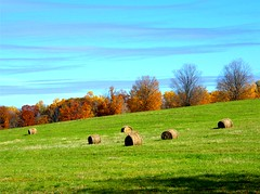 Bales of Hay (Stanley Zimny (Thank You for 35 Million views)) Tags: fall autumn seasons landscape stormking art center bales hay