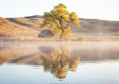Fall Gold (Erik Johnson Photography) Tags: red fall nebraska autumn sandhills barn reflection tree color lake lone rural country countryside prairie great plains photography abandoned sunrise morning fog water national geographic