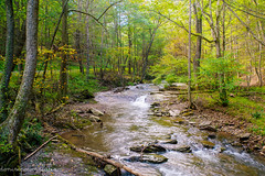 Lost River (Singing Like Cicadas) Tags: 2018 autumn september westvirginia waterscape fall nature outdoors appalachia water river landscape hardycounty onethousandgifts 1000gifts lostriver lostriverstatepark