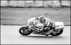 Barry Sheene on the Yamaha (G. Postlethwaite esq.) Tags: bw barrysheene canon40d donningtonpark tamron300mmf56 yamahe blackandwhite film monochrome motorbikes photoborder racing