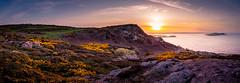 Panorama Howth Ireland (ronnevinkx) Tags: bloei dublin eiland geel gelebloemen ierland iersezee landschap paars zee countydublin ireland ie
