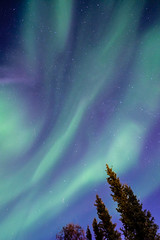 Northern lights at 66 degrees north (Kristaaaaa) Tags: 16mm aurora auroraborealis borealis canada fortgoodhope fujifilm green longexposure night north northern northernlights northwestterritories nwt sahtu sky skyscape stars wideangle