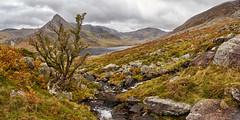Ogwen panorama (another_scotsman) Tags: snowdonia ogwen tryfan landscape cloud sky rain mountain