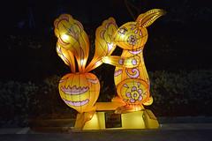 Jade Rabbit (chooyutshing) Tags: jaderabbit lanterns lightedup midautumnfestival2018 display attractions gardensbythebay baysouth marinabay singapore