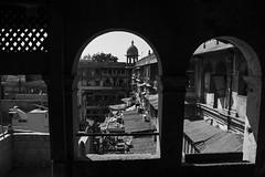 framed (charlesgyoung) Tags: olddelhi india delhi d500 rajasthan blackandwhite charlesyoung karineaignerphotographyexpedition nikon nikonphotography nikondx monochrome streetphotography travelphotography
