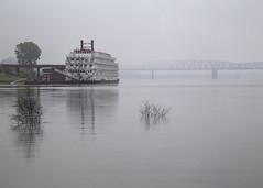 Misty Mississippi (f8inMemphis) Tags: memphis memphistn tennessee arkansas mississippiriver mississippi riverboat river fog mist misty rain rainyday blackandwhitebutnot weatherphoto riverboatcruise americancruiseline riverboatamerica