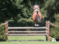Clean pair of hooves (tom ballard2009) Tags: hickstead sussex jumping show showjumping sport hooves fence horse leap jump