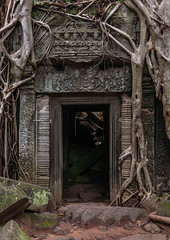 Temple overgrown with tree roots, Siem Reap Province, Angkor, Cambodia (Eric Lafforgue) Tags: abandoned ancientcivilisation angkor angkorwat apsara archaeology architecture artscultureandentertainment asia beautyinnature buddhism buddhist builtstructure cambodia colourimage door doorway environment famousplace history indochina khmer lush majestic nopeople oldruin outdoors rediscovered religion root ruin southeastasia spirituality temple templebuilding tetramelesnudiflora traditionallycambodian tranquility travel traveldestinations tree unescoworldheritagesite vertical wat yasodharapura camboimg9819 siemreapprovince