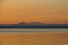 Attention! Freshly painted! (Yarin Asanth) Tags: october sunset island reichenau lakeconstance yarinasanth gerdkozik