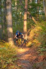 Martn fährt über eine Wurzel (MadCyborg) Tags: fuji fujifilm singlespeed xt20 mountainbike mtb mtbisok