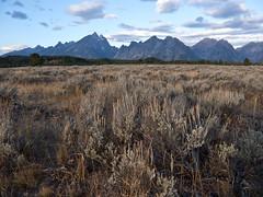 "The ""Grand"" Teton Range (Crest Pictures) Tags: wyoming grandtetonnationalpark tetons tetonrange grandteton"