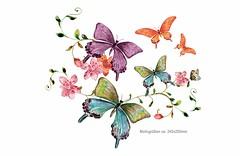 Bunte Schmetterlinge, Print Transfer Applikation, Bügelprints (patchmonkeys) Tags: patch bügelbild applikation aufbügler print schmetterling falter blumen design transfer bügeln heat bügel