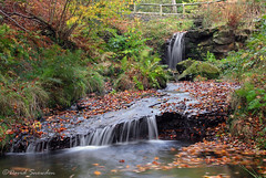 Blow Gill (Dave Snowdon (Wipeout Dave)) Tags: davidsnowdonphotography canoneos80d landscape northyorkshire northyorkmoors blowgill waterfall stream autumn fall