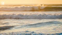 SurfPhotography_©CHDE-3423 (chde.eu) Tags: action beach chdeeu chde delarsille eos france hossegor seignosse ocean beachlife saltylife saltywater pro surfer sport surf surfeur surfers surfeurs surfing picture photo surfphotography waves wsl worldsurfleague quikpro quiksilver quiksilverpro roxypro championshiptour
