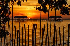 Sunset at Kri Island (Andrés Guerrero) Tags: 2018 agua anochecer atardecer beach cielo indonesia kri kriisland mar papua papuabarat papuaoccidental playa puestadesol rajaampat sea shilouettes silueta siluetas sol sun sunset travel viaje water westpapua