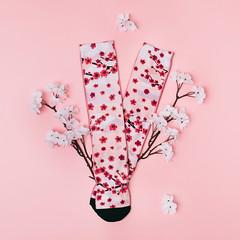 I-AOMORI-1 (GVG STORE) Tags: skatesocks fashionsox gvg gvgstore gvgshop socks kpop kfashion