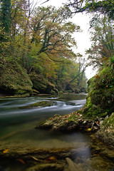 Autumnal River (MW // Photography) Tags: river water landscape herbst austria longtimeexposure autumn nature nikon